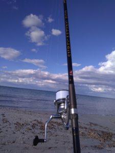 Surfcasting Rod