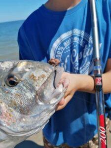 Pesca orata f1 fluorocarbon