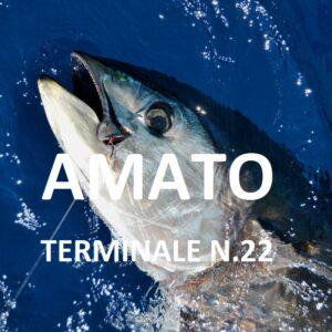 tonno-terminale